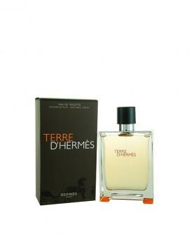 Hermes Terre D'Hermes Men Eau De Toilette Spray 100ml